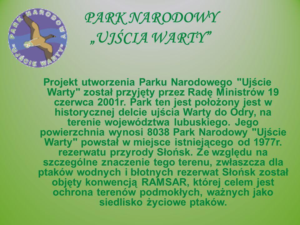 """PARK NARODOWY """"UJŚCIA WARTY"""