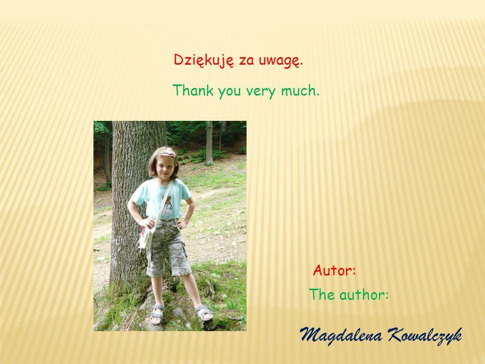 Magdalena Kowalczyk Dziękuję za uwagę. Thank you very much. Autor: