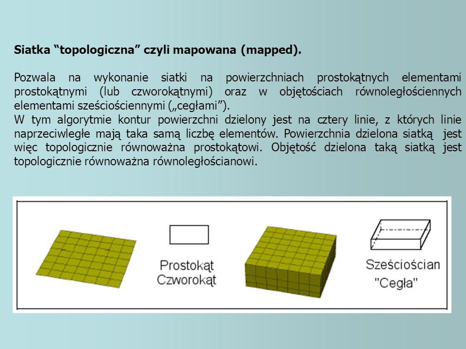 Siatka topologiczna czyli mapowana (mapped).