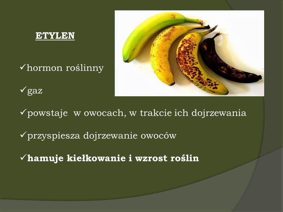 powstaje w owocach, w trakcie ich dojrzewania