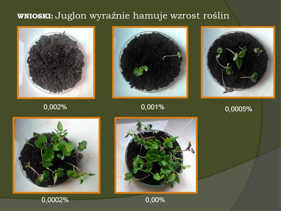 WNIOSKI: Juglon wyraźnie hamuje wzrost roślin