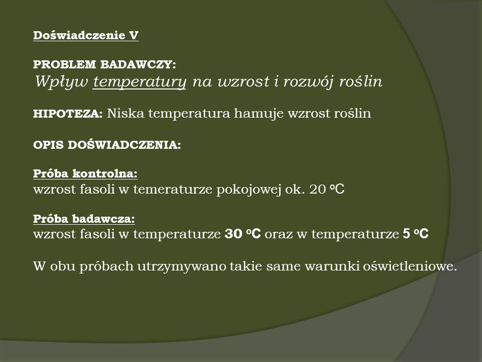 Wpływ temperatury na wzrost i rozwój roślin