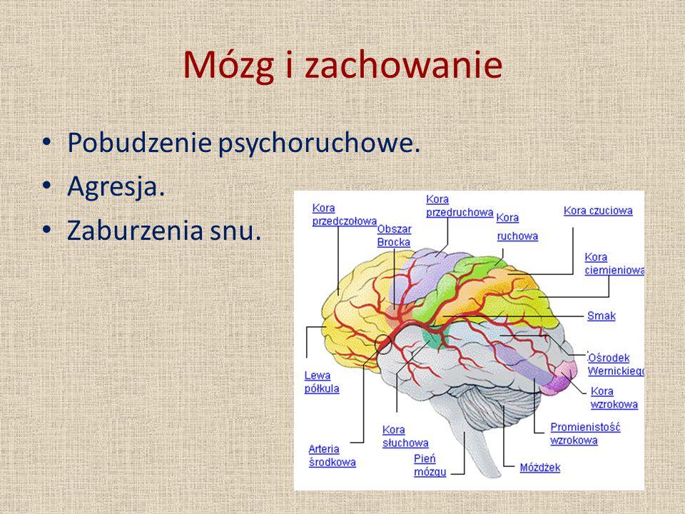 Mózg i zachowanie Pobudzenie psychoruchowe. Agresja. Zaburzenia snu.