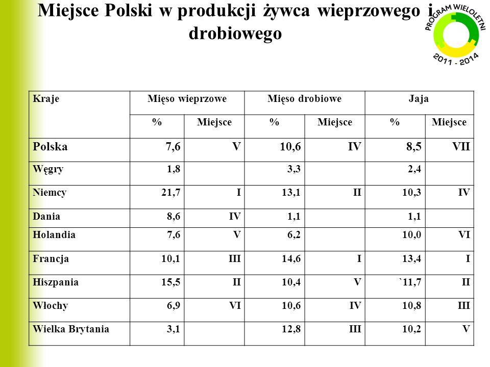 Miejsce Polski w produkcji żywca wieprzowego i drobiowego