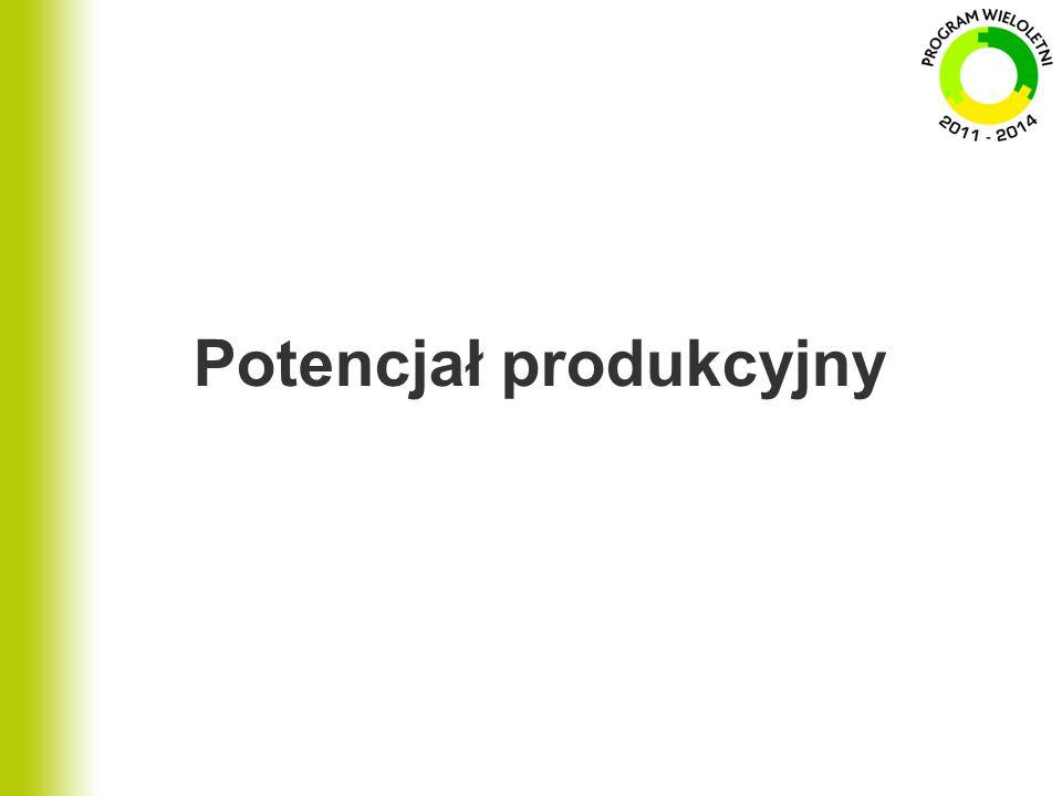 Potencjał produkcyjny