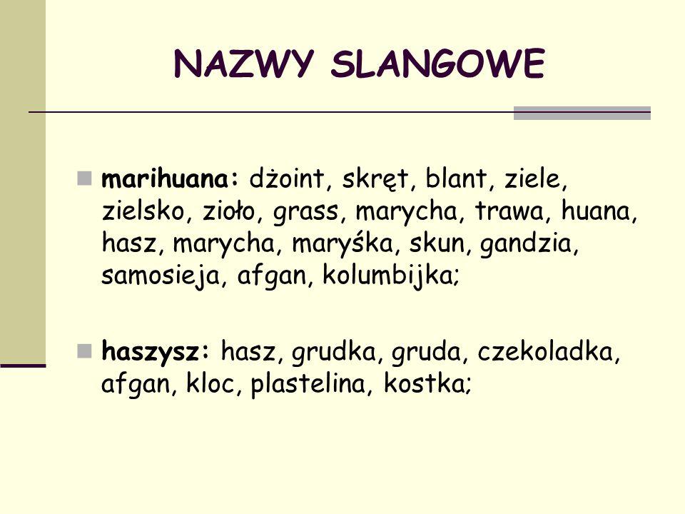 NAZWY SLANGOWE