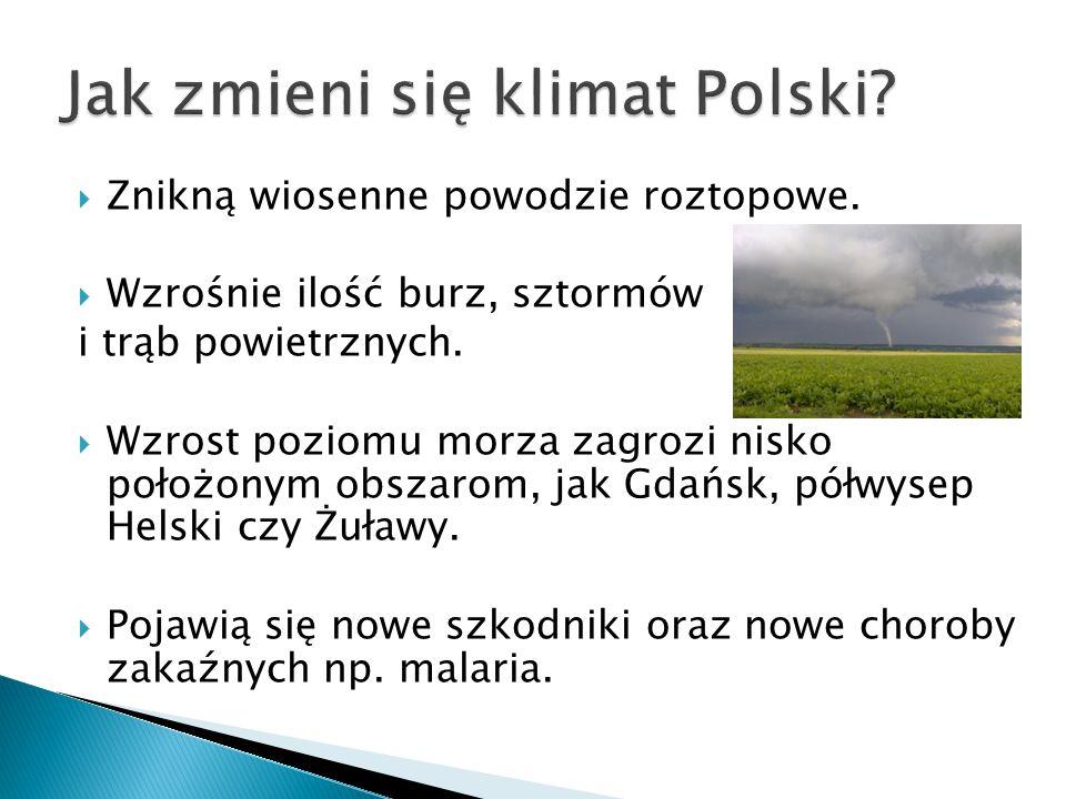 Jak zmieni się klimat Polski