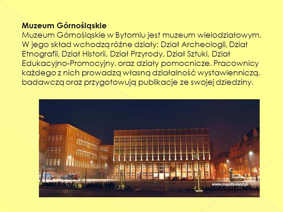 Muzeum Górnośląskie Muzeum Górnośląskie w Bytomiu jest muzeum wielodziałowym.