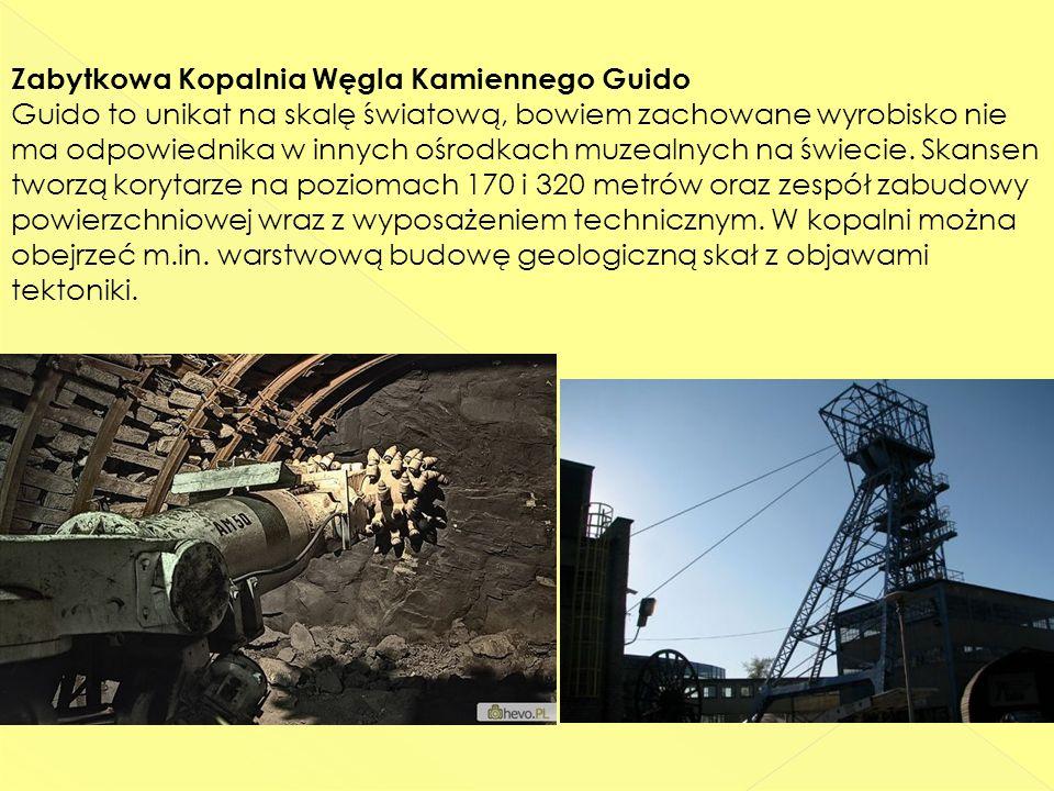 Zabytkowa Kopalnia Węgla Kamiennego Guido Guido to unikat na skalę światową, bowiem zachowane wyrobisko nie ma odpowiednika w innych ośrodkach muzealnych na świecie.