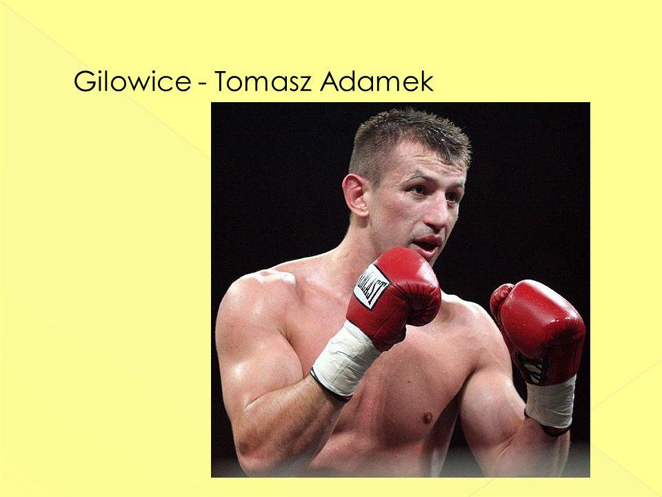 Gilowice - Tomasz Adamek