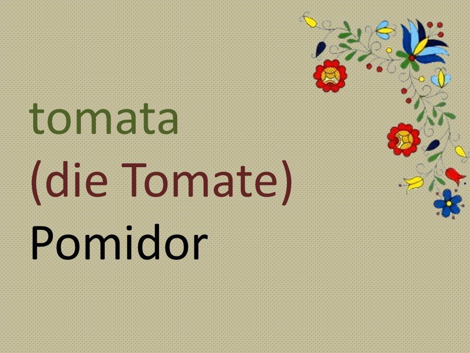 tomata (die Tomate) Pomidor