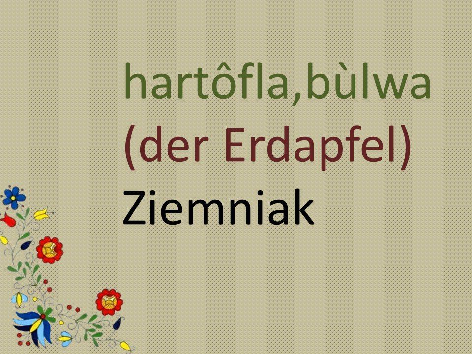hartôfla,bùlwa (der Erdapfel) Ziemniak