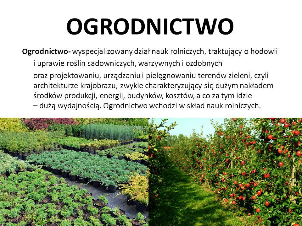 OGRODNICTWO Ogrodnictwo- wyspecjalizowany dział nauk rolniczych, traktujący o hodowli. i uprawie roślin sadowniczych, warzywnych i ozdobnych.
