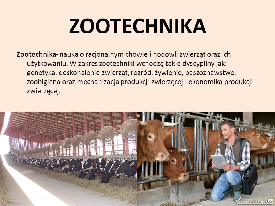 ZOOTECHNIKA