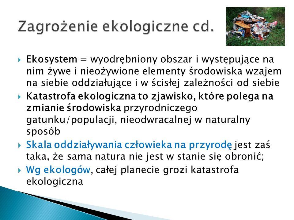 Zagrożenie ekologiczne cd.