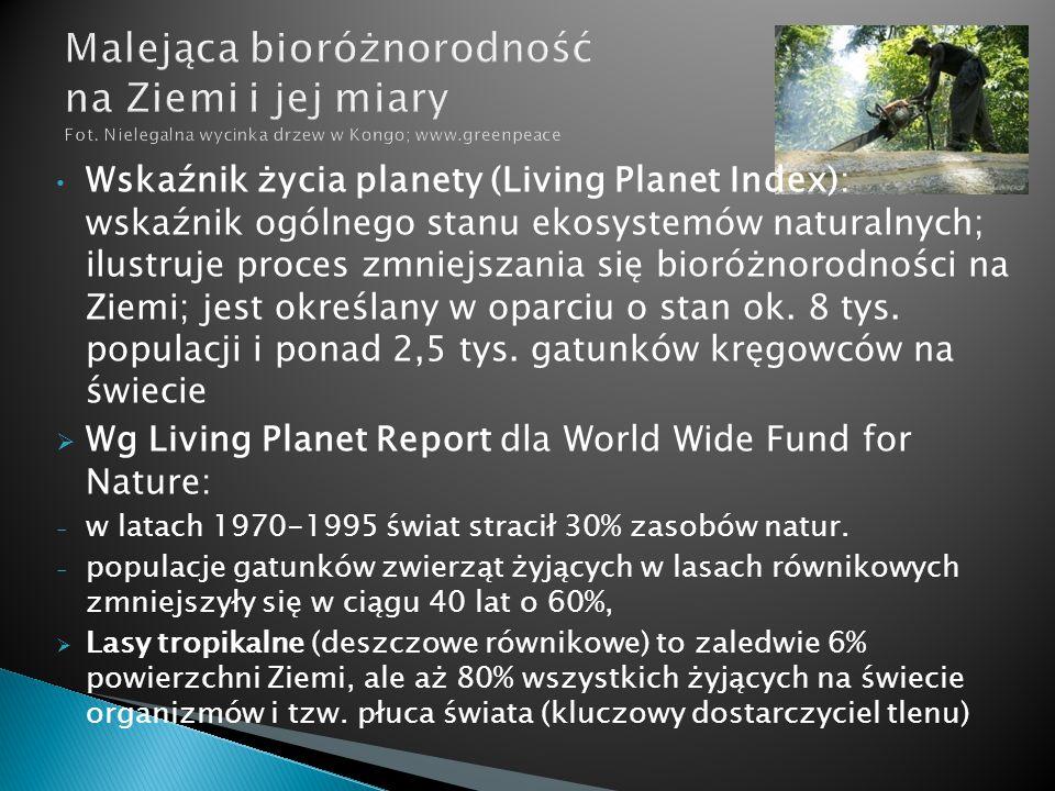 Malejąca bioróżnorodność na Ziemi i jej miary Fot
