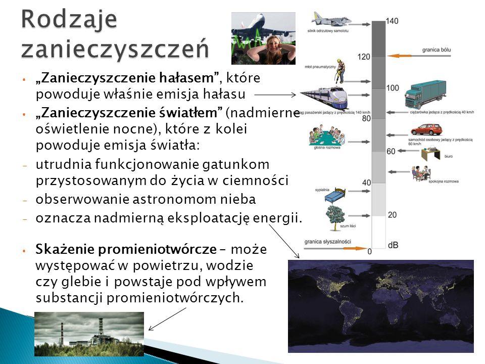 Rodzaje zanieczyszczeń