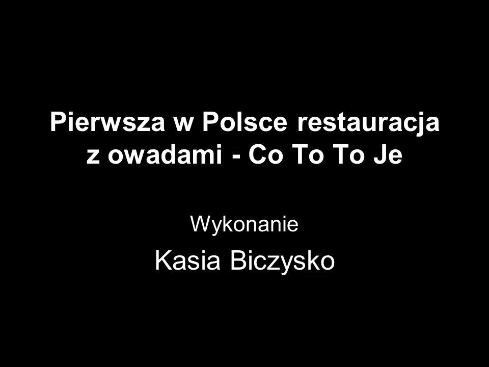 Pierwsza w Polsce restauracja z owadami - Co To To Je