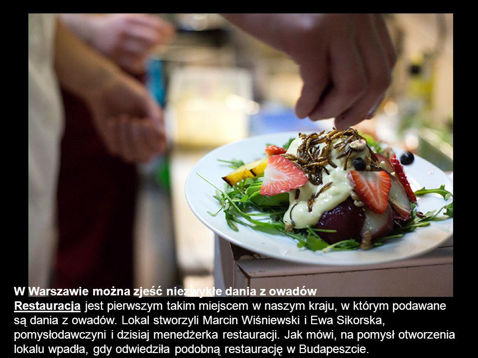 W Warszawie można zjeść niezwykłe dania z owadów