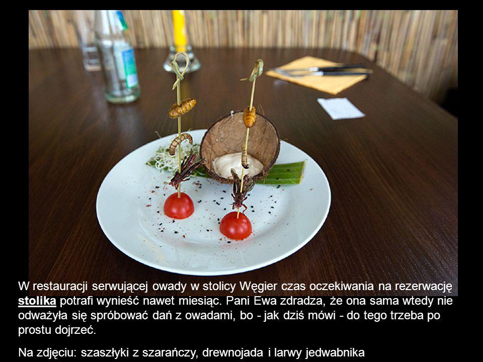 W restauracji serwującej owady w stolicy Węgier czas oczekiwania na rezerwację