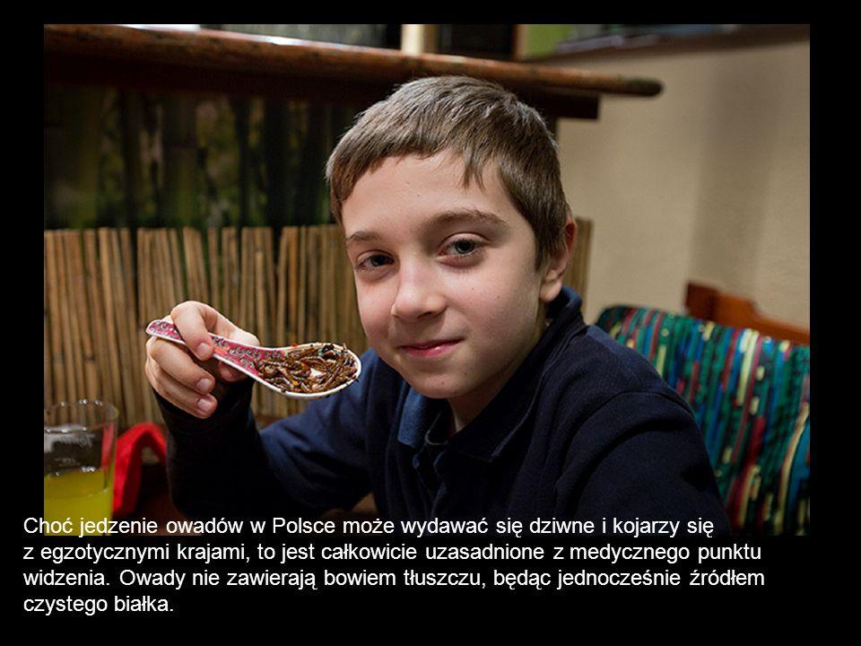 Choć jedzenie owadów w Polsce może wydawać się dziwne i kojarzy się