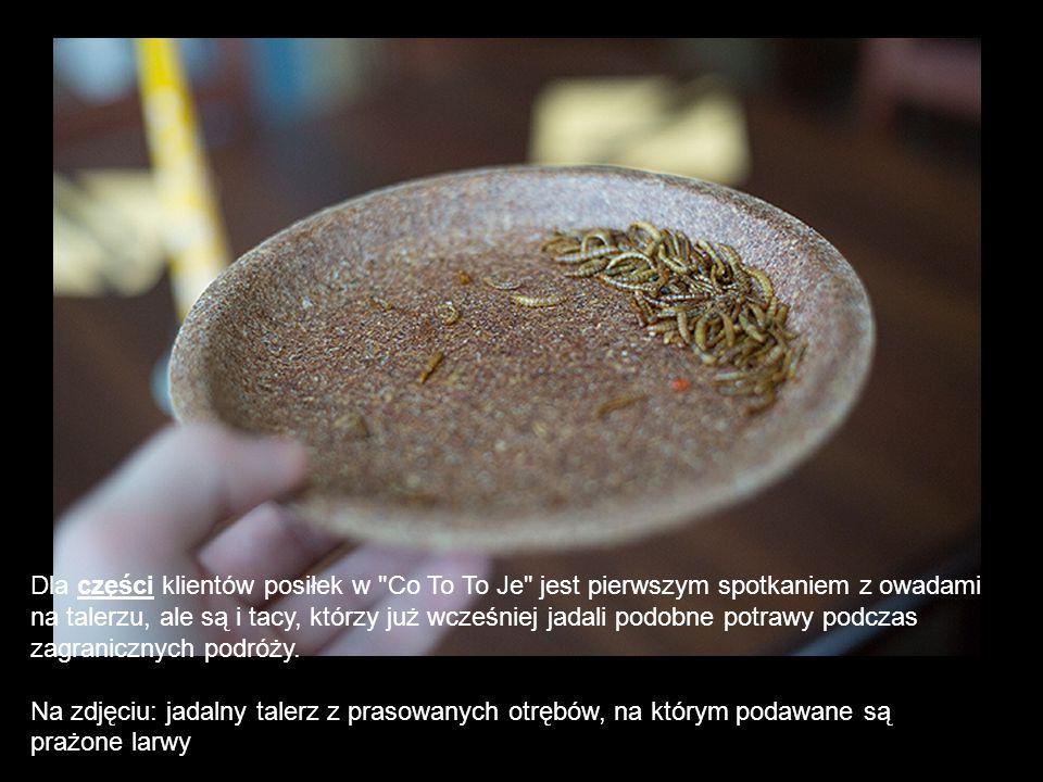 Dla części klientów posiłek w Co To To Je jest pierwszym spotkaniem z owadami
