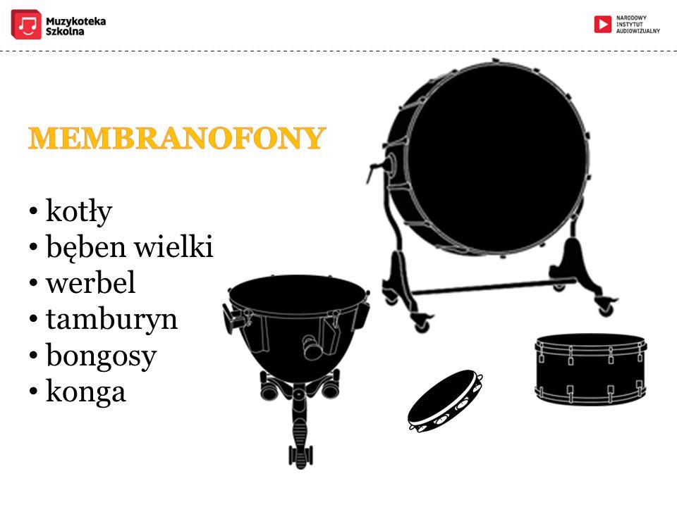 MEMBRANOFONY kotły bęben wielki werbel tamburyn bongosy konga