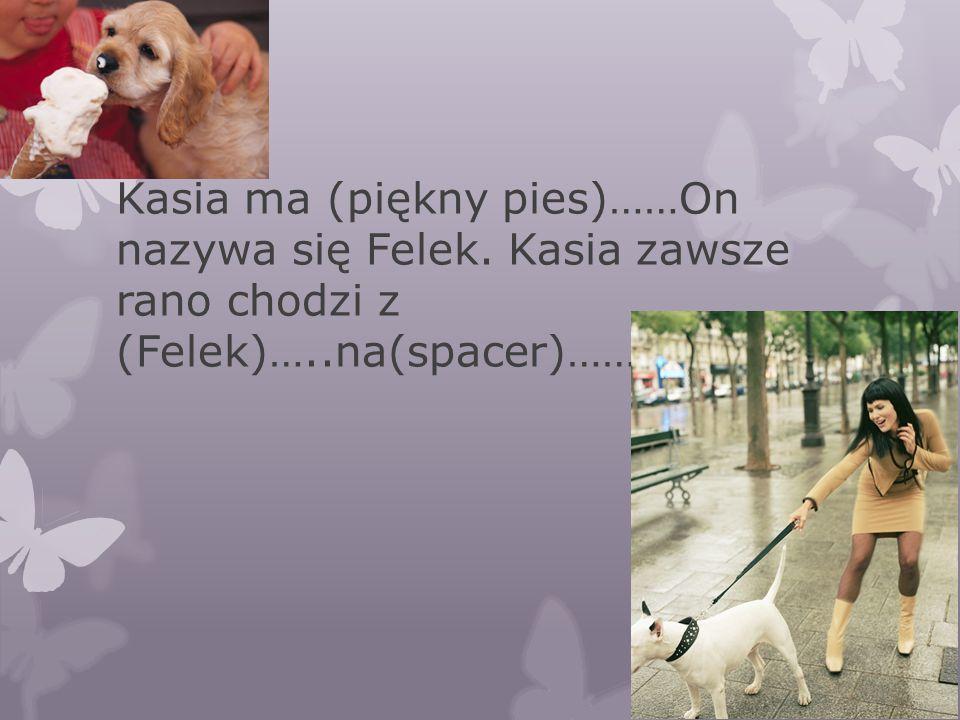 Kasia ma (piękny pies)……On nazywa się Felek