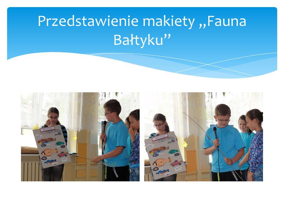 """Przedstawienie makiety """"Fauna Bałtyku"""