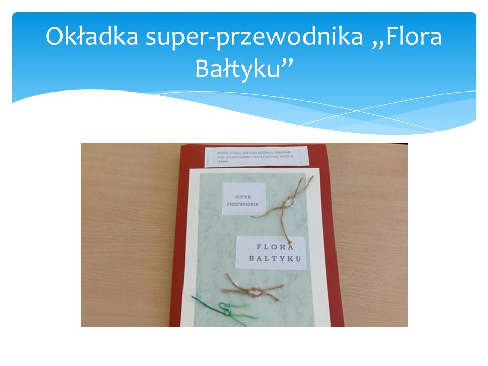 """Okładka super-przewodnika """"Flora Bałtyku"""