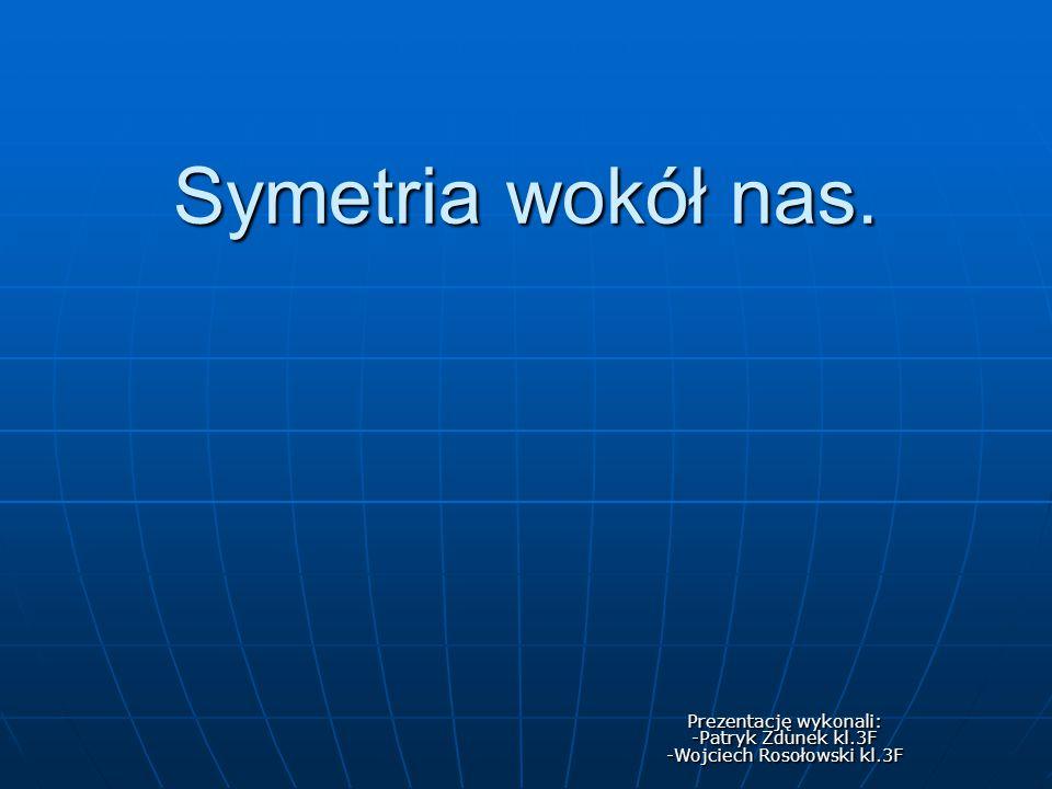 Prezentację wykonali: -Patryk Zdunek kl.3F -Wojciech Rosołowski kl.3F