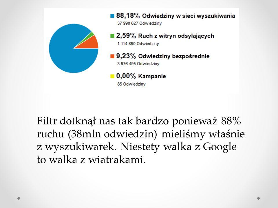 Filtr dotknął nas tak bardzo ponieważ 88% ruchu (38mln odwiedzin) mieliśmy właśnie z wyszukiwarek.