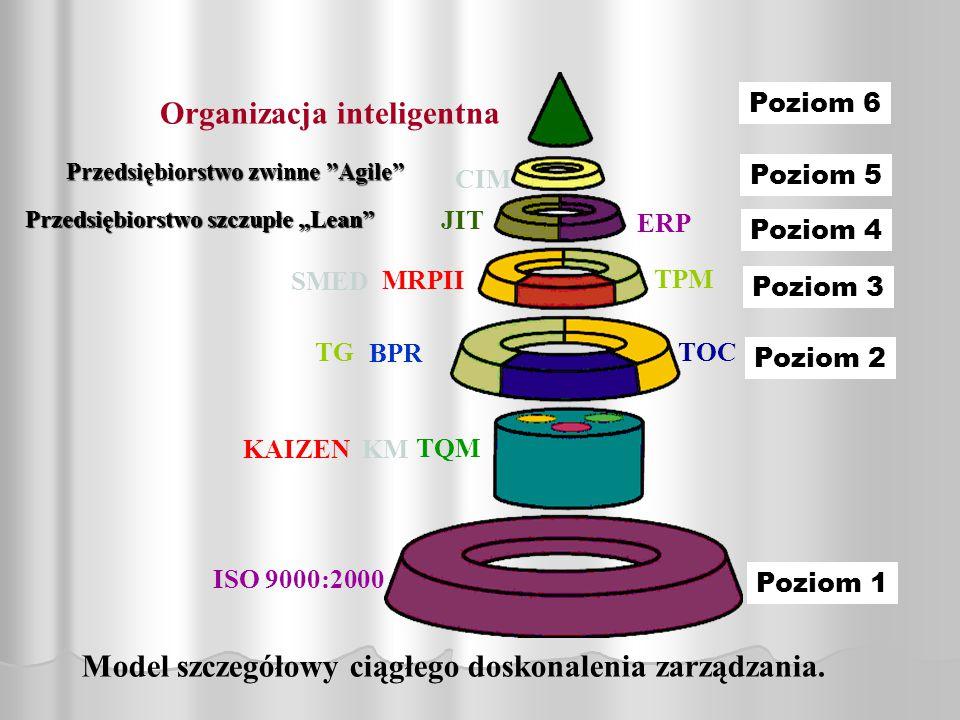 Organizacja inteligentna