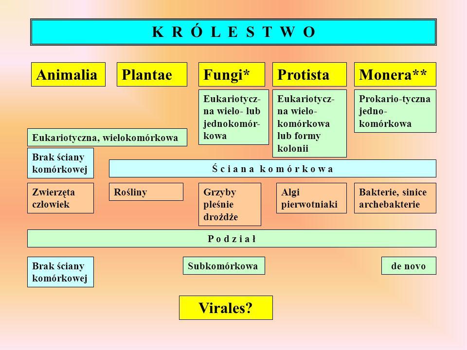 K R Ó L E S T W O Animalia Plantae Fungi* Protista Monera** Virales