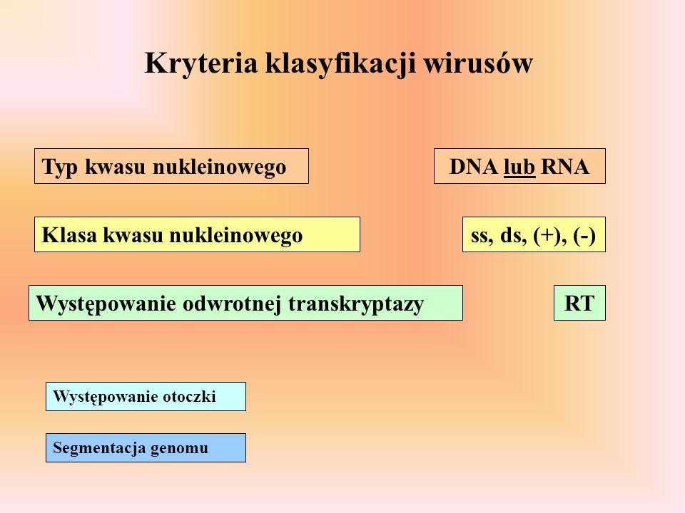 Kryteria klasyfikacji wirusów