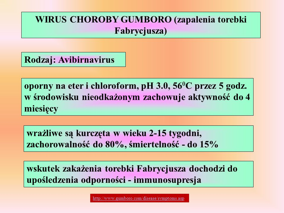 WIRUS CHOROBY GUMBORO (zapalenia torebki Fabrycjusza)