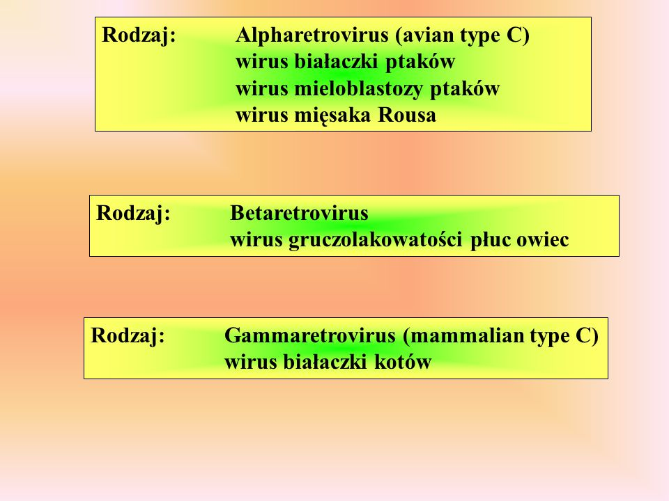 Rodzaj:. Alpharetrovirus (avian type C). wirus białaczki ptaków