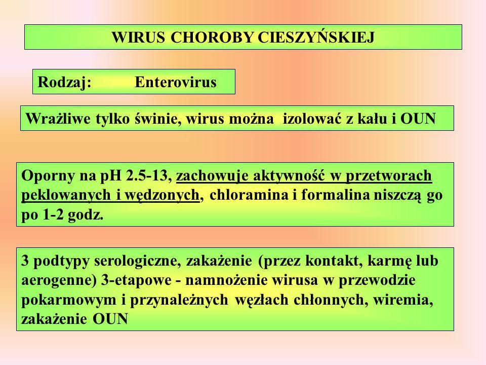 WIRUS CHOROBY CIESZYŃSKIEJ