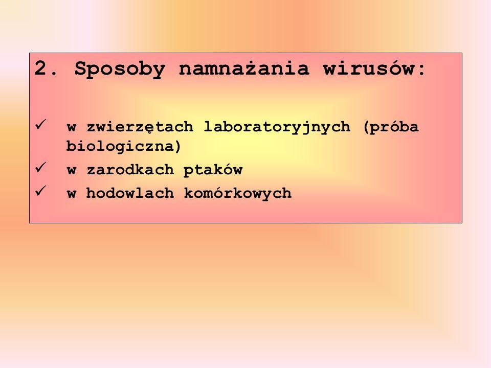 2. Sposoby namnażania wirusów: