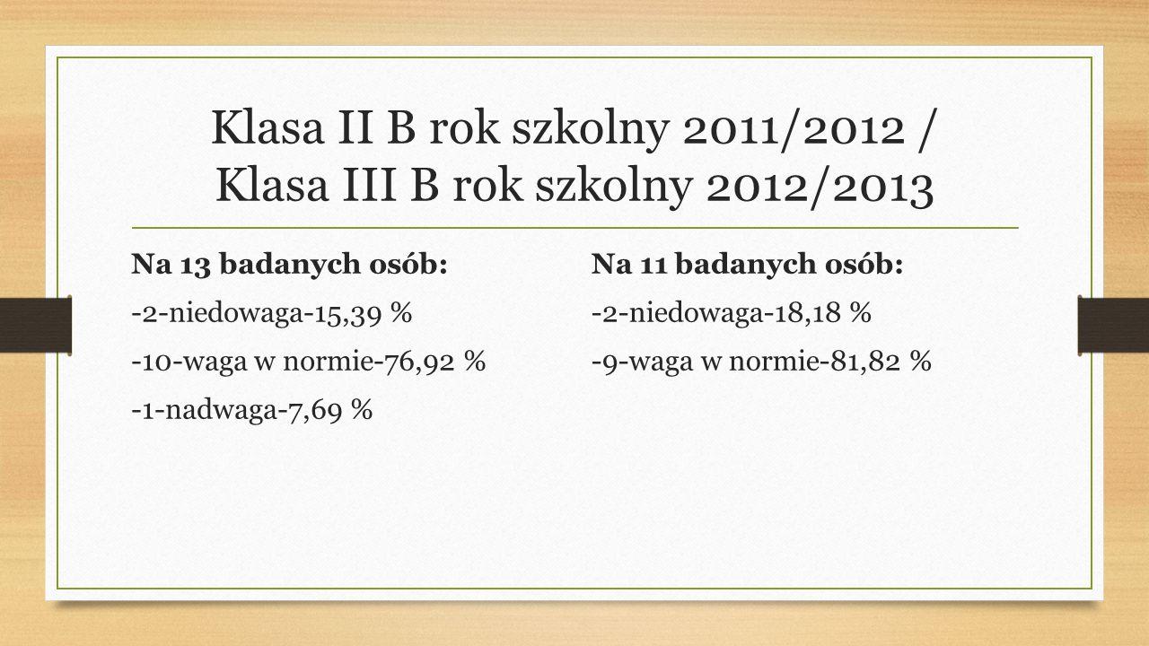 Klasa II B rok szkolny 2011/2012 / Klasa III B rok szkolny 2012/2013