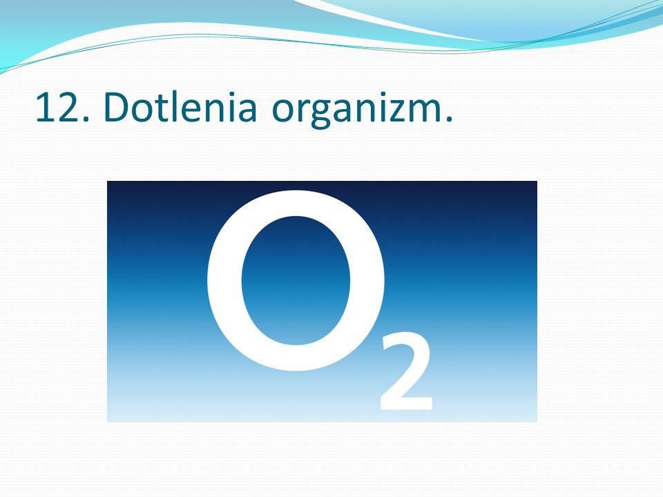 12. Dotlenia organizm.