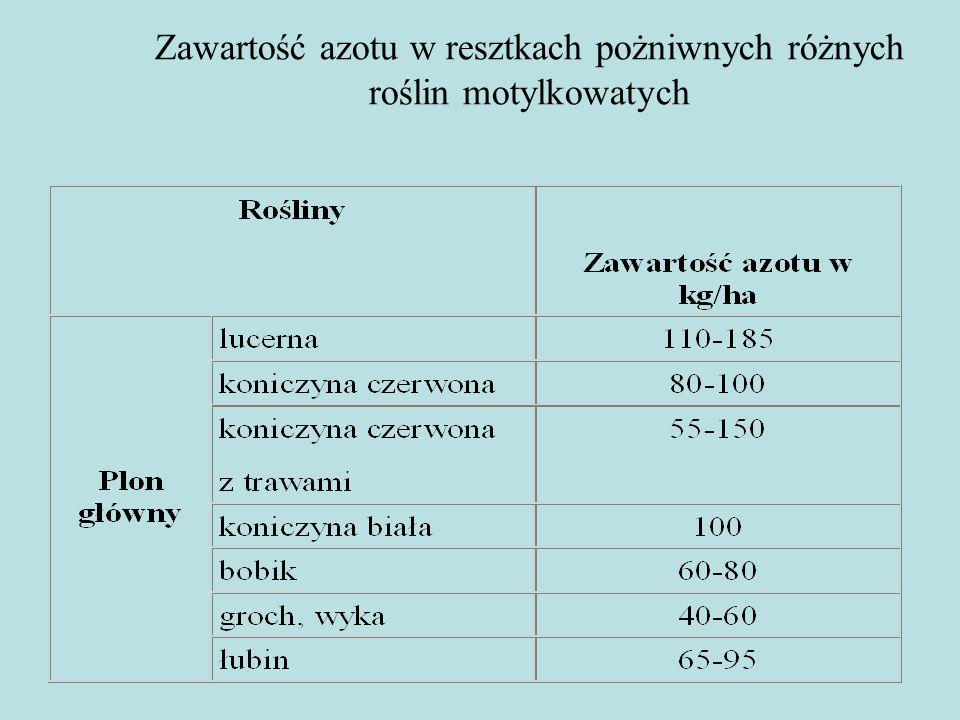 Zawartość azotu w resztkach pożniwnych różnych roślin motylkowatych
