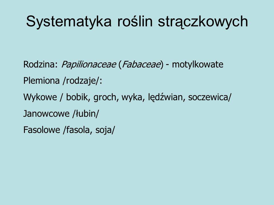 Systematyka roślin strączkowych
