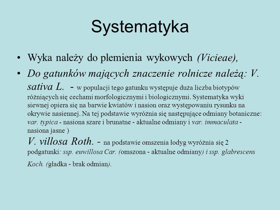 Systematyka Wyka należy do plemienia wykowych (Vicieae),