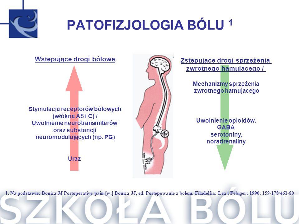PATOFIZJOLOGIA BÓLU 1 Wstępujące drogi bólowe