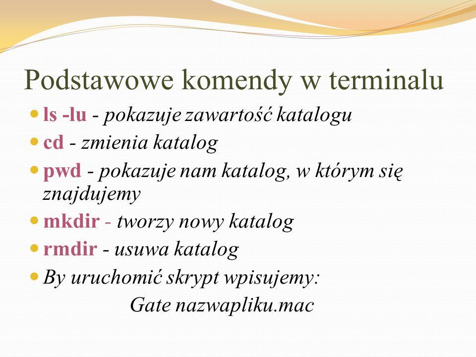 Podstawowe komendy w terminalu