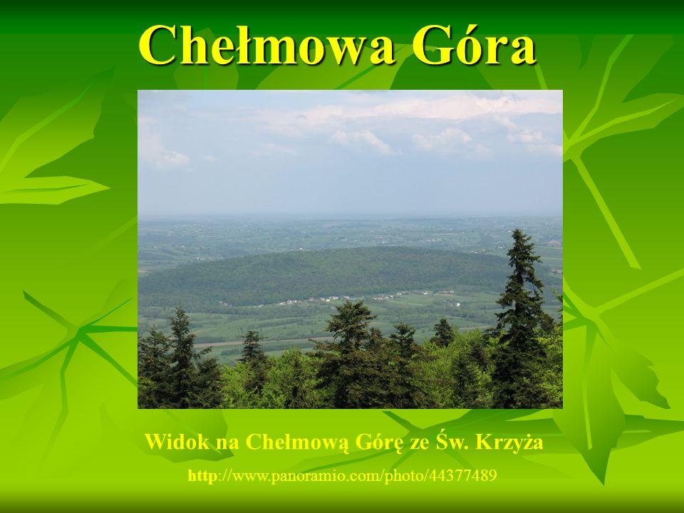 Chełmowa Góra Widok na Chełmową Górę ze Św. Krzyża