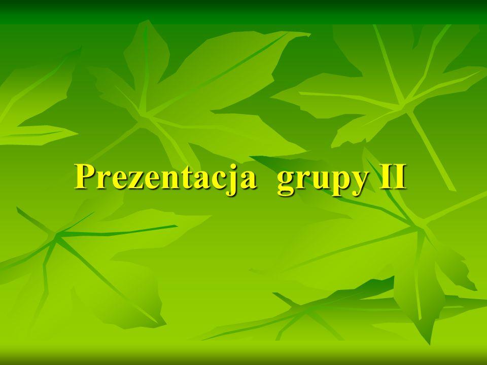 Prezentacja grupy II