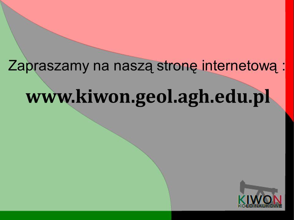 Zapraszamy na naszą stronę internetową :