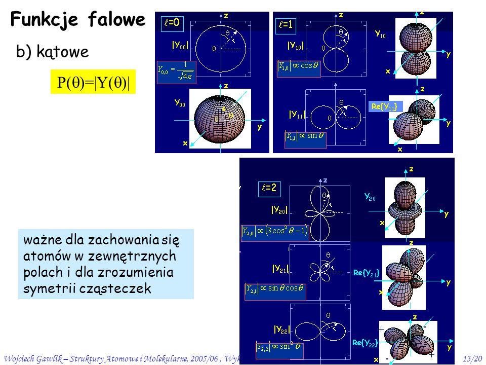 Funkcje falowe b) kątowe P()=|Y()|